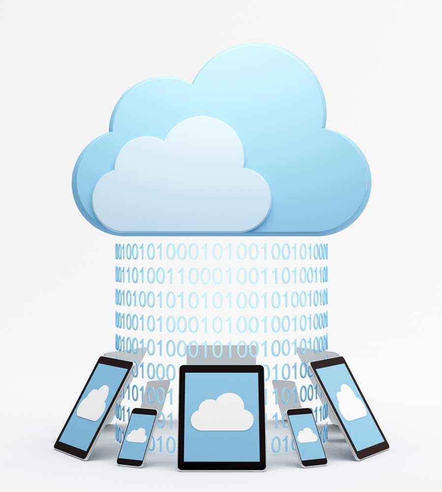 Business software on multiple devices